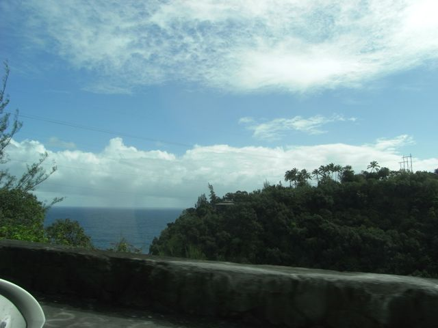 Big Island landscape 1