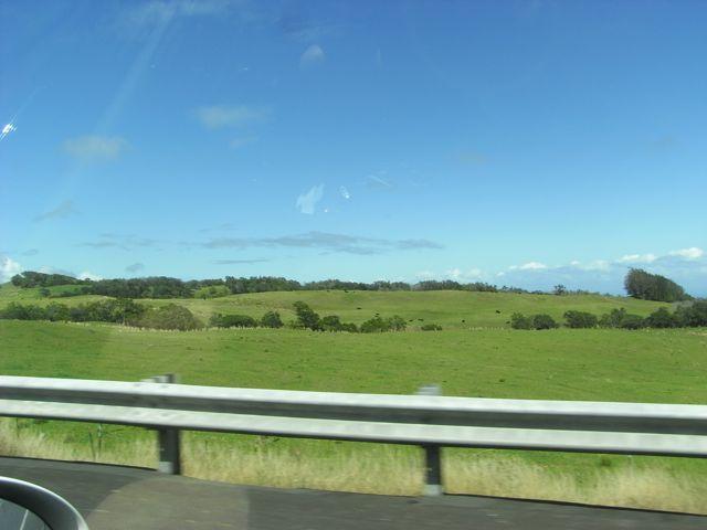 Big Island landscape 5